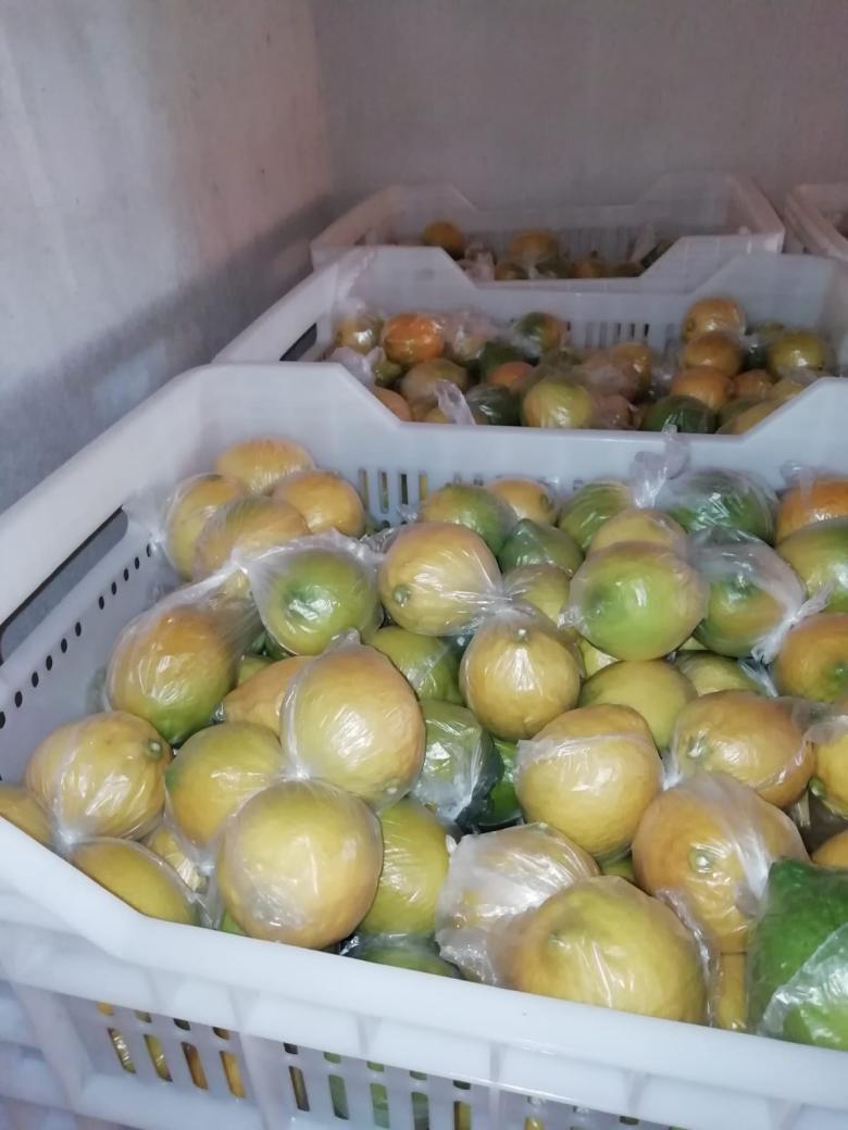 Poşetli Sulu Limon